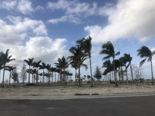 avenir-leasing-palm-beach-garden